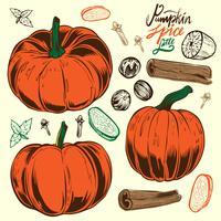 Mão Lettering Pumpkin Spice Latte em fundo vetor