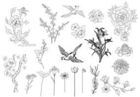 Vetores de flores e pássaros gravados