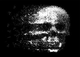 Vetorial, crânio, ilustração vetor