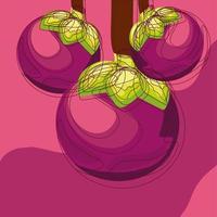 fruto do mangostão tropical vetor
