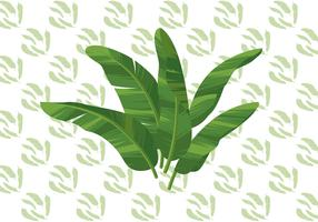 Ilustração em vetor de folha de banana