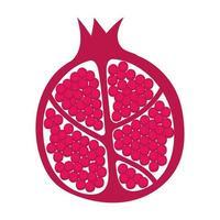 ícone da natureza fresca de fruta meia romã vetor