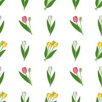 padrão sem emenda com flores da primavera, tulipas de cores diferentes. conjunto de plantas com botões brilhantes e folhas verdes vetor