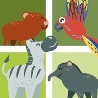 conjunto de animais tropicais vetor