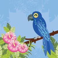 papagaio na flor e no galho vetor