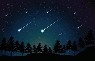 meteoro à noite na cena da floresta vetor