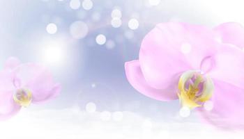 fundo brilhante 3d realista de flor de orquídea vetor