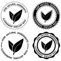 Conjunto de ingredientes naturais de rótulos de alimentos pretos orgânicos vetor