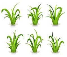 Conjunto de folhas de grama vetor