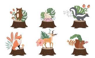 coleção de objetos de floresta fofa com skunk vetor