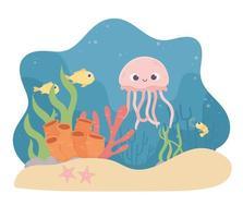 água-viva peixes estrela-do-mar camarão vida recife de coral no fundo do mar vetor