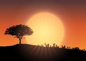 Silhueta da árvore contra o céu do por do sol vetor