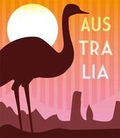 cartão com etiqueta de avestruz e austrália vetor