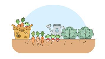 Vetor De Jardim De Legumes