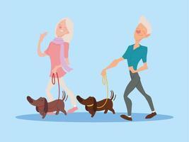casal de idosos passeando com seus cachorros, idosos ativos vetor