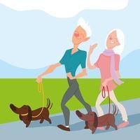 casal de idosos passear com seus cachorros no parque, idosos ativos vetor