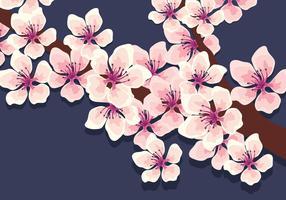 Vetor de flores de cerejeira