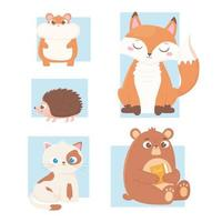 animais fofos carregam com ícones livro hamster raposa gato e ouriço vetor
