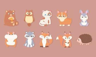 ícones de animais fofos com urso coelho coruja gato cachorro hamster raposa guaxinim esquilo e ouriço vetor