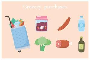 carrinho de compras de supermercado com comida inclui água de brócolis geléia e muito mais vetor