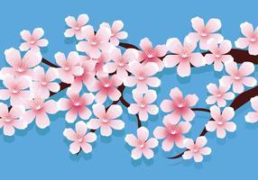 Ilustração em vetor de flores de cerejeira
