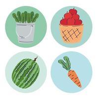 pacote de quatro frutas e vegetais produtos agrícolas vetor