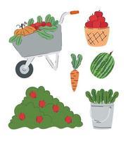 pacote de frutas e vegetais produtos agrícolas vetor