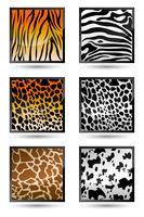 Textura da pele animal