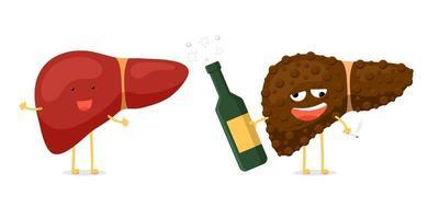 diversão saudável e personagem de fígado bêbado doente insalubre segurar na mão garrafa de álcool e cigarro. conceito de destruição de órgãos da glândula exócrina humana. ilustração vetorial de comparação hepática vetor