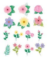 pacote de quatorze lindos ícones decorativos de flores e folhas vetor