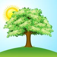 Árvore verde vetor