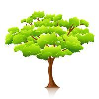 Grande árvore vetor