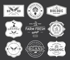 design de emblemas e etiquetas de vetor