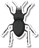 um modelo de adesivo com vista superior de um besouro isolado vetor