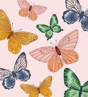 borboletas coloridas de fundo vetor