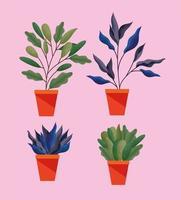 conjunto de plantas com folhas em um vaso vetor