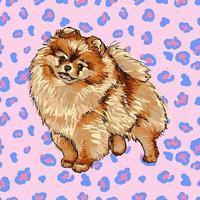 ilustração vetorial colorida da raça de cachorro pomerânia isolada no fundo branco vetor