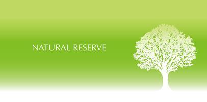 Fundo verde fresco com uma silhueta da árvore e espaço do texto. vetor