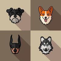 quatro cães mascotes criam personagens vetor