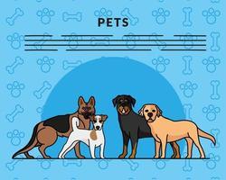quatro cães mascotes criam personagens e letras vetor