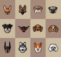 doze cachorros, mascotes, raça, personagens vetor