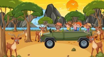 safári na hora do pôr do sol com crianças observando um grupo de veados vetor