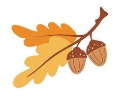ramo com folhas e bolotas. Carvalho. Tempo de outono. objeto de floresta. tempo de colheita. ilustração em vetor colorido plana dos desenhos animados.
