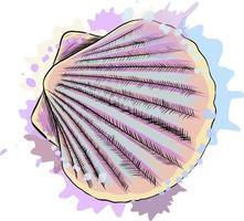 vista de cima, vieiras de concha do mar de um toque de aquarela, desenho colorido, realista. ilustração vetorial de tintas vetor