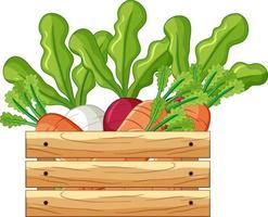 vegetais em uma caixa de madeira em estilo cartoon isolado vetor
