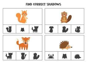 Encontre a sombra correta de animais bonitos da floresta. jogos de cartas de clipe para impressão para crianças. vetor