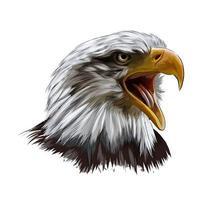 retrato de cabeça de águia careca de um toque de aquarela, desenho colorido, realista. ilustração vetorial de tintas vetor