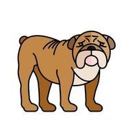 personagem da raça mascote do animal de estimação bulldog vetor