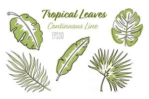 coleção de folhas tropicais em linha contínua vetor