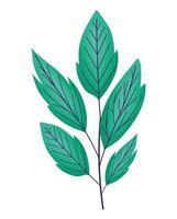 lindas folhas de esmeralda vetor